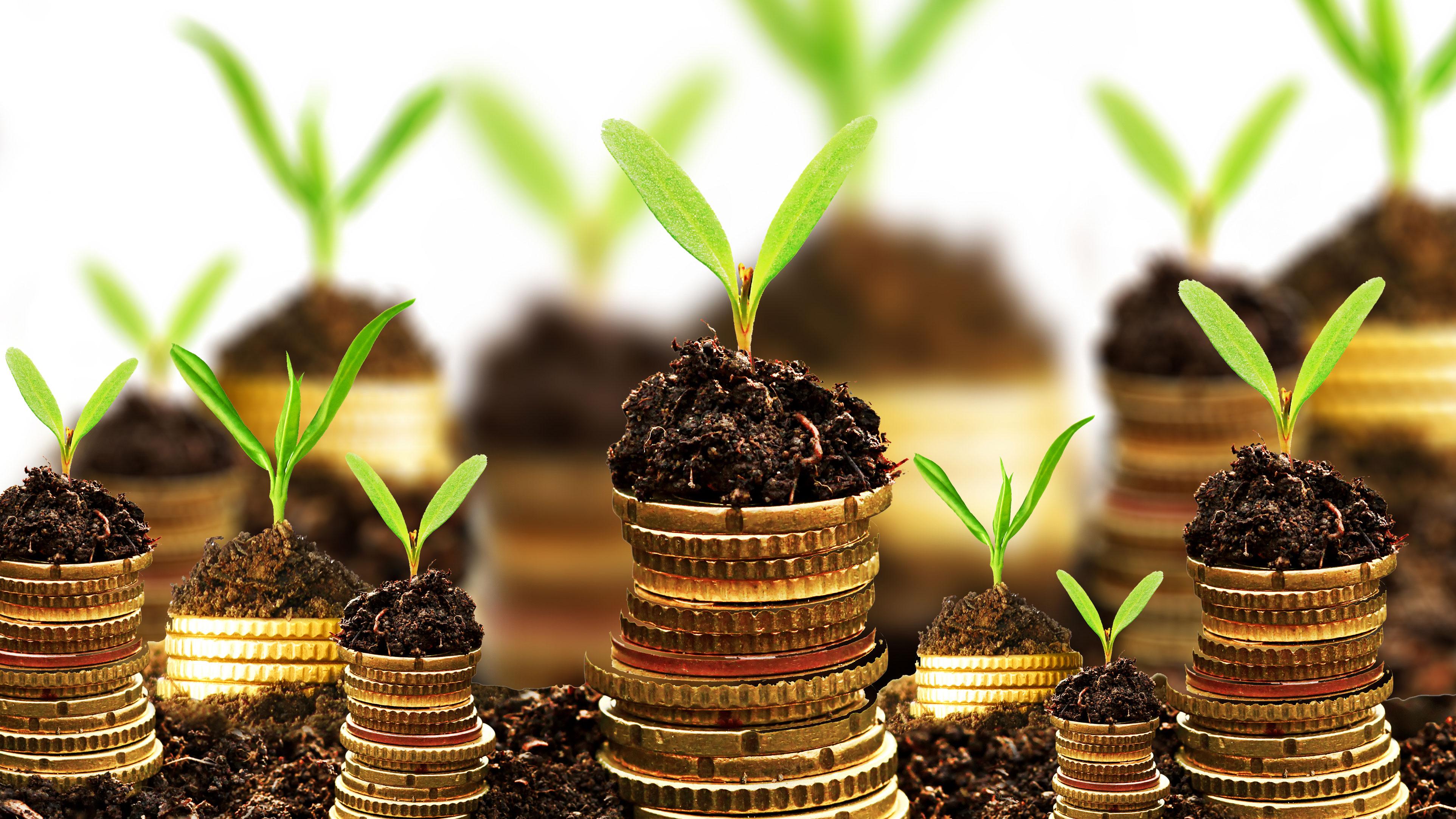 什么叫私募股权基金?